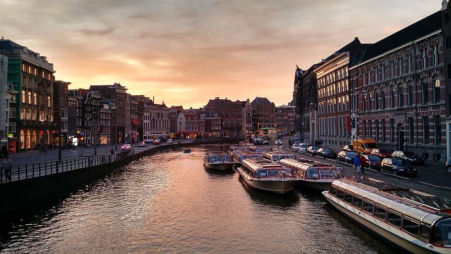 Amsterdam $100 guide